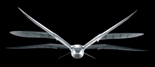 SmartBird vue 3