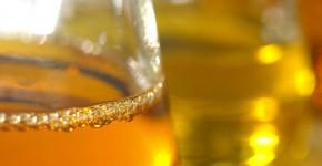 biodiesel_olva_technologie