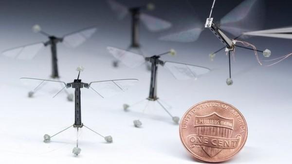 RoboBee-plus-petit-drone-robot-volant-du-monde