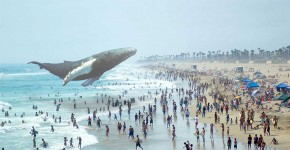 Crédit image : Magic Leap